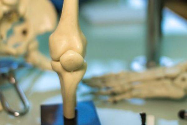 ortopedia-603x300